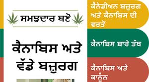 Cannabis and Older Adults in Punjabi
