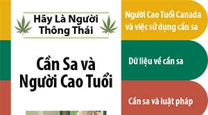 Cannabis and Older Adults in Vietnamese