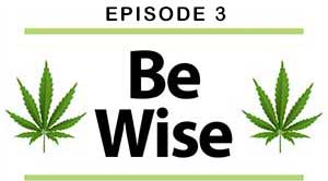 Be Wise Podcasts Episode 3