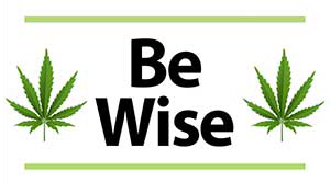 Be Wise Podcasts